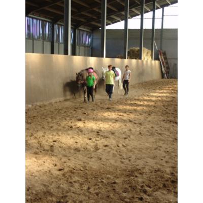 Ponykampen foto 5